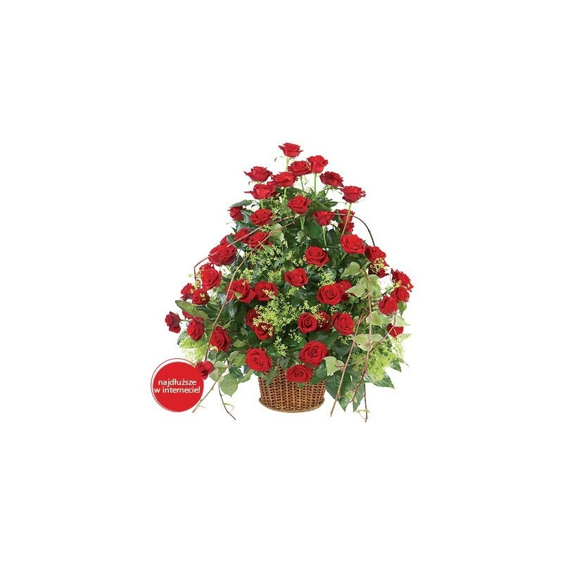 Kosz 50 Róż
