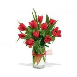Bukiet 10 Tulipanów Czerwonych