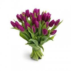 Bukiet 25 Tulipanów Fioletowych