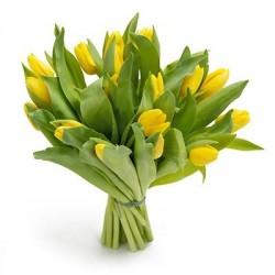 Bukiet 21 Tulipanów Żółtych