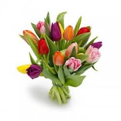 Bukiet 15 Tulipanów Kolorowych